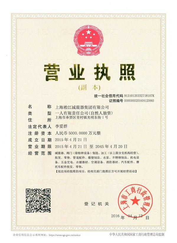 淞江集团营业执照副本